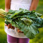 Shop for Certified Organic produce, pantry and home goods at Bundeena Organics