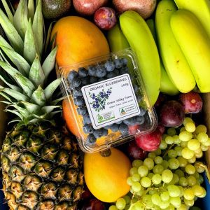 Seasonal Fruit Box - Bundeena Organics