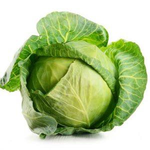 Organic Green Cabbage - Bundeena Organics