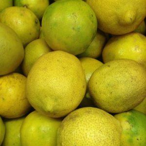 Organic Juicing Lemons - Bundeena Organics