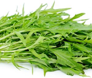 Organic Mizuna - Bundeena Organics