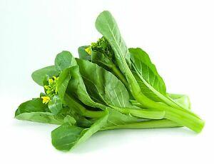 Organic Choy Sum (bunch) - Bundeena Organics