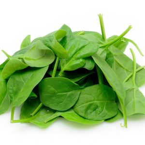 Organic Baby Spinach - Bulk 1.5kg - Bundeena Organics