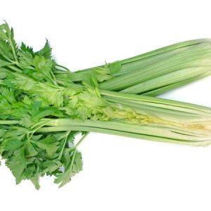 Organic Celery Half bunch - Bundeena Organics