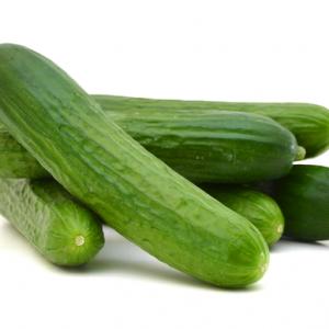 Organic Cucumber - Bundeena Organics