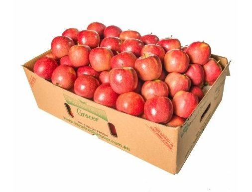 Organic Juicing Apples Bulk - Bundeena Organics